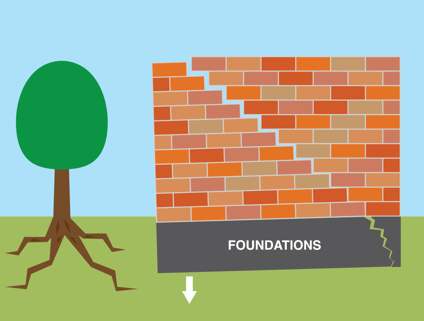 An illustration of a tree causing subsidence